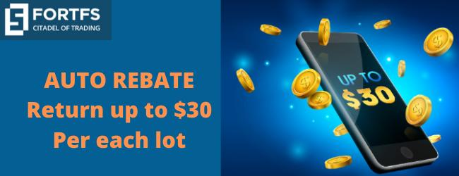 Get an astounding proposal up to $30 Auto Rebate Return on FortFS
